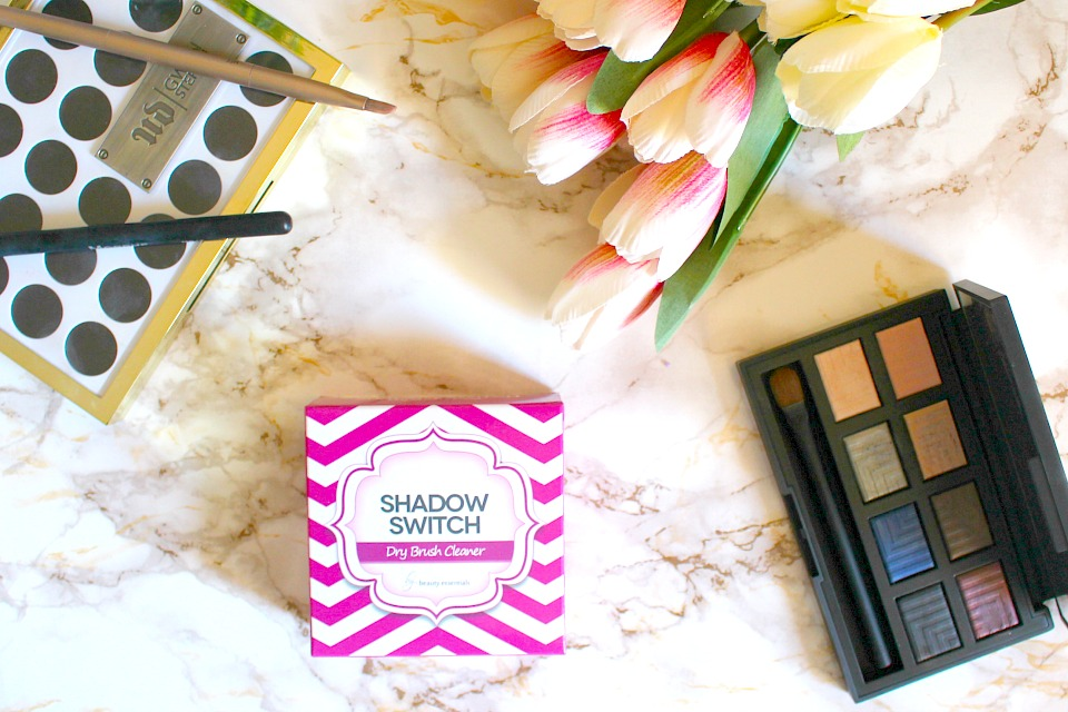Shadow Switch Dry Brush Cleaner