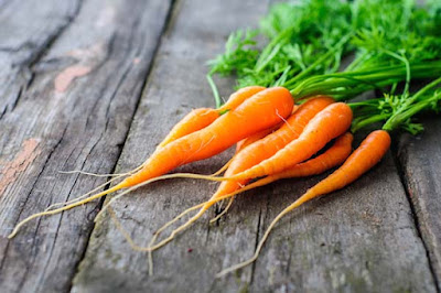 Carrots are good source of vitamin A best for eyesight
