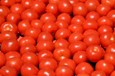 Free food stock photos and high quality images - Tomatoes.