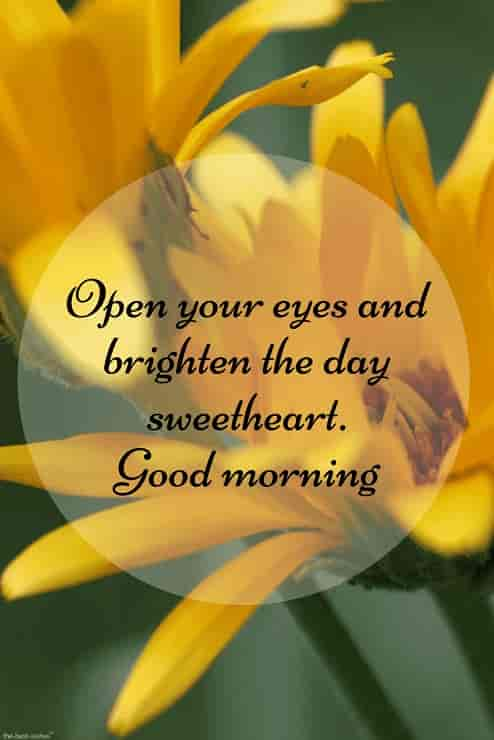 good morning message for her with hd yellow flowers