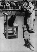 illjustracija-kashtanka-chehov-hudozhnik-d-kardovskij