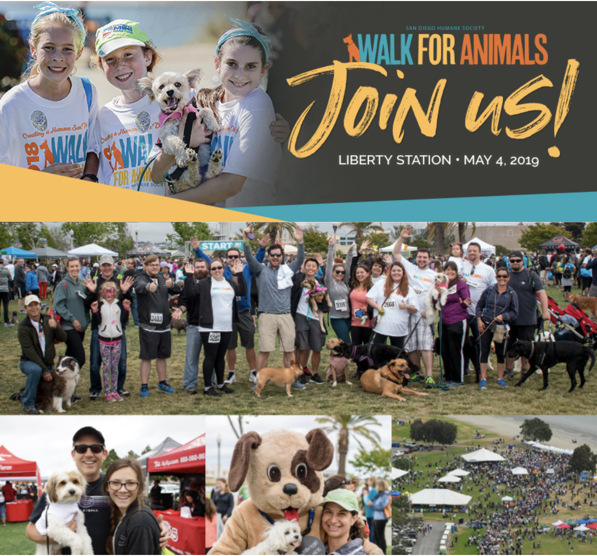 Save 50% on registration for the San Diego Humane Society's Walk For Animals on May 4!