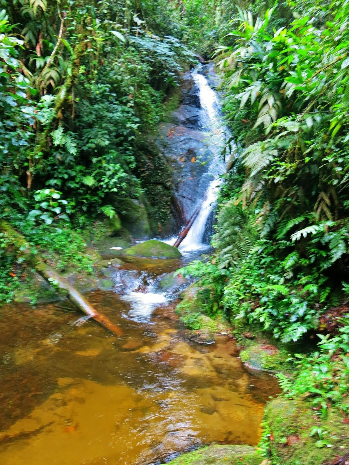 Cachoeira da Toca, no Vale do Alcantilado, em Visconde de Mauá.