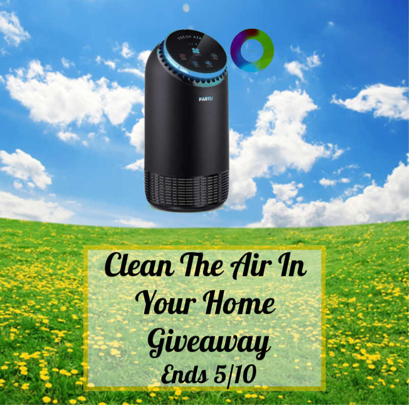 Clean The Air In Your Home Giveaway