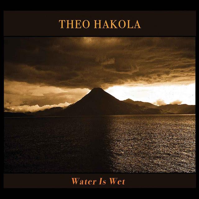Water is Wet est le huitième album de Theo Hakola au sommet de son art.