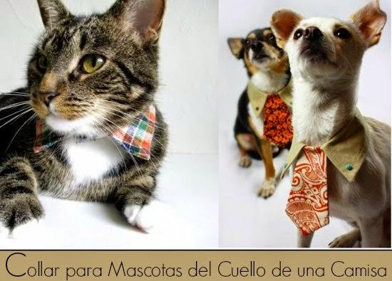 mascotas, collar, cuello camisa, patrones, disfraces, tutoriales