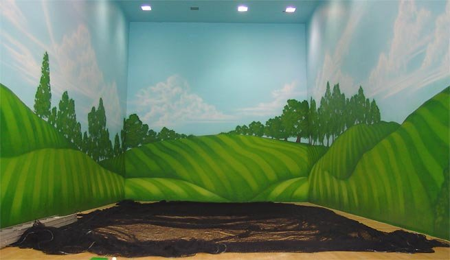 Wallpaper Murals For Kids Best Home Designs