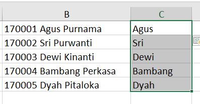 contoh fill flash excel