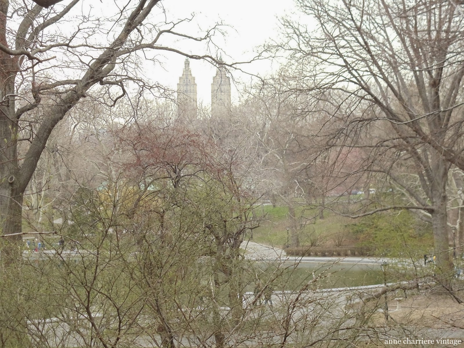 anne charriere voyage, travel photography, new york, central park,