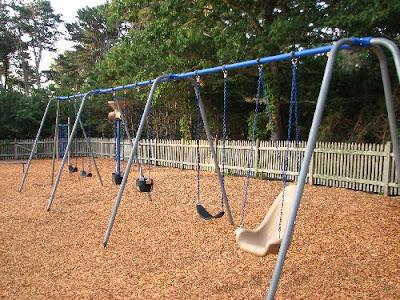 Wiley Park Swings