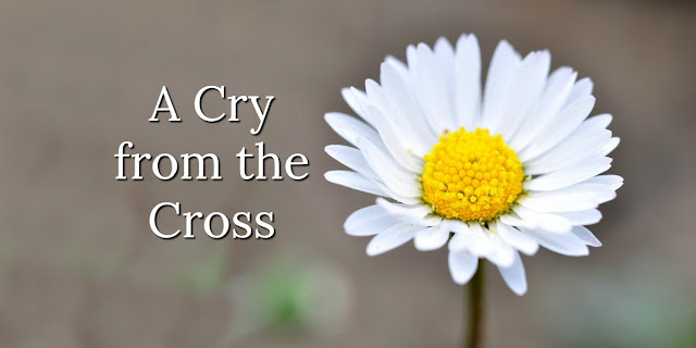 A Cry From the Cross - Rich With Meaning!