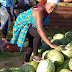 Kenya: How to get Watermelon (Wholesale/Retail) in Mombasa.