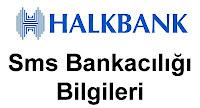 Halkbank 3401 Sms Bankacılığı