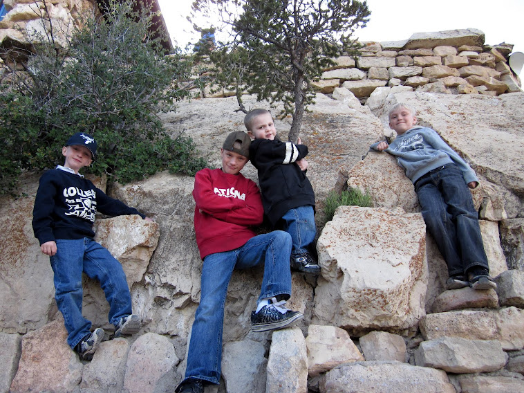 The boys at the Grand Canyon 2011