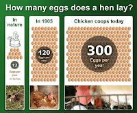 Informasi Telur: Hasil rekayasa genetik