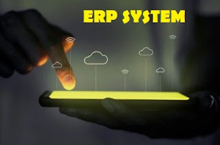 What are the Different Types of ERP?