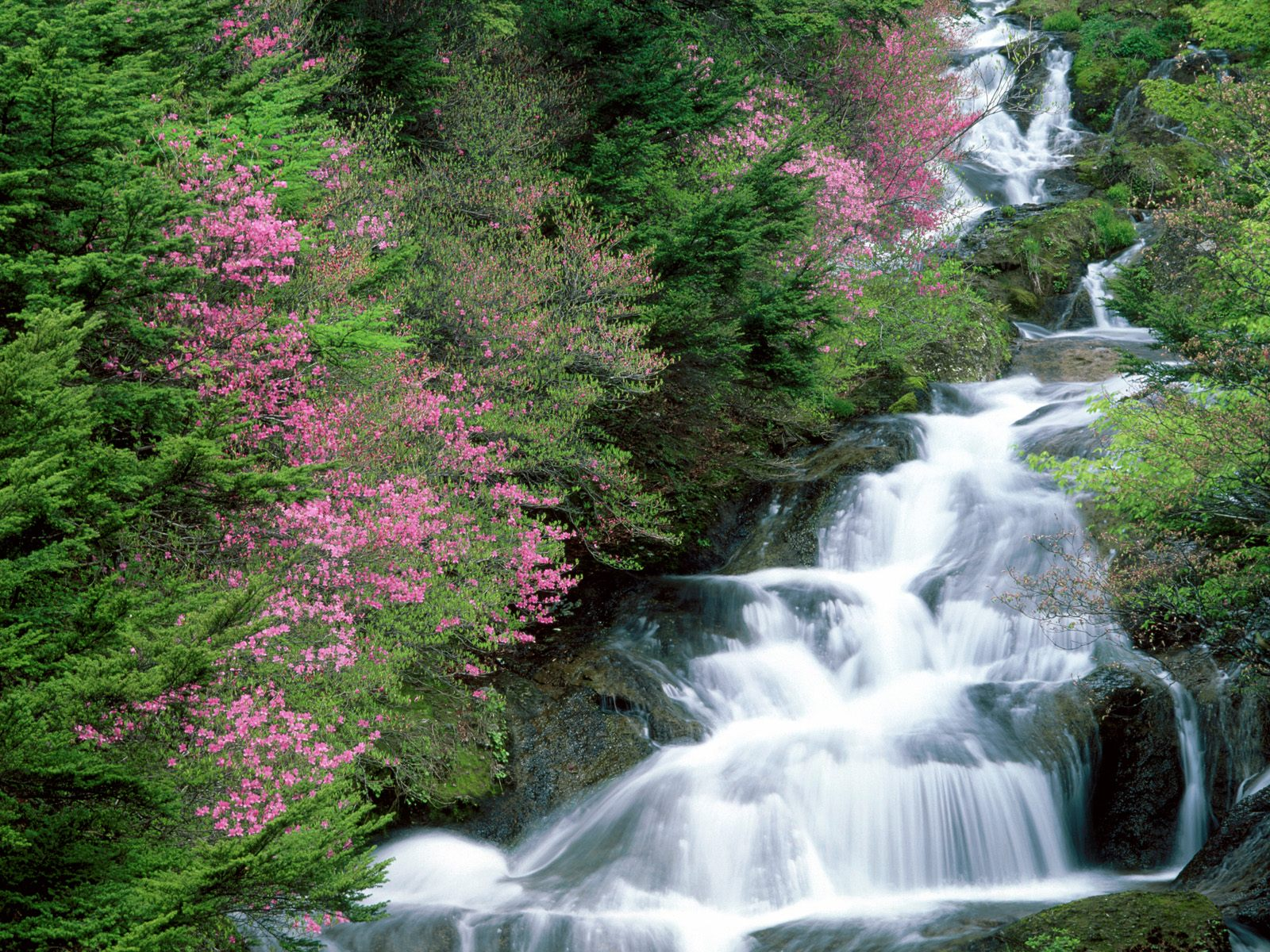 Hq Desktop Wallpapers Beauty Of Water Fall Pics