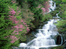 Hq Desktop Wallpapers Beauty Of Water Fall Pics