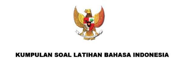 kisi Soal yang diterapkan dalam sistem CAT berdasarkan Soal-soal Latihan Kemampuan Berbahasa Indonesia yang Baik dan Benar CPNS 2017