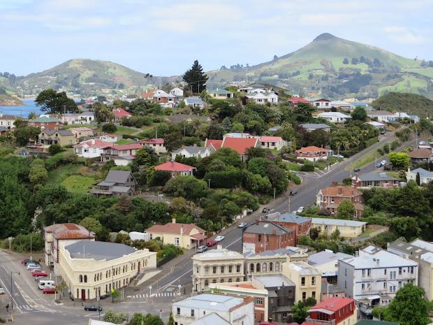 Waltzing Horses Port Chalmers Dunedin Zealand
