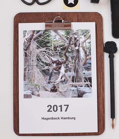 clixxie Fotobuch Kalender Polapix