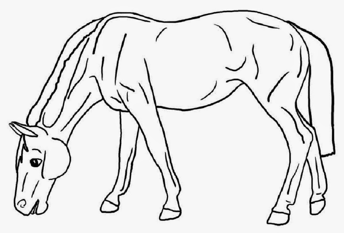 Colour Drawing Free HD Wallpapers: Horse For Kids Coloring ...