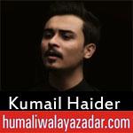 https://www.humaliwalayazadar.com/2018/06/kumail-haider-ramzan-noha-2018.html