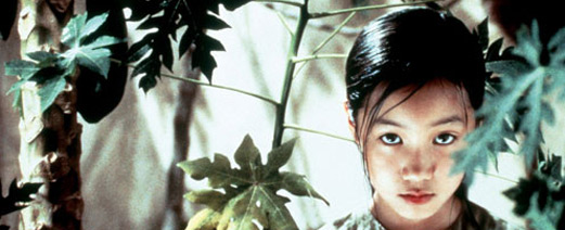 the scent of green papaya A vietnamese servant girl, mui, observes lives within two different saigon families: the first, a woman textile seller with three boys and a frequently absent husband the second, a handsome young pianist with his fiancée.
