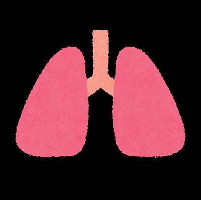 肺のアイコン(内蔵)