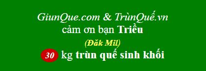 Trùn quế Đăk Mil