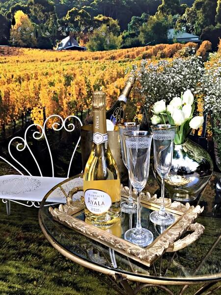 champagne-ayala2