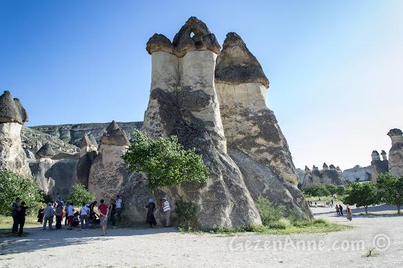 Kapadokya Paşabağları peri bacaları