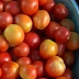 Dealing With a Tomato Glut