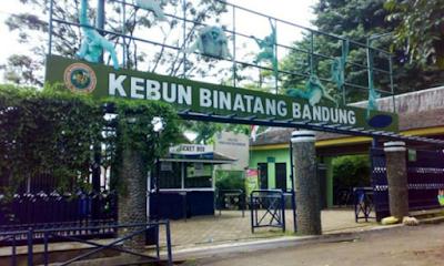 wisata alam kebun binatang bandung,  Daftar Tempat Wisata di Lembang dan SekitarnyaYang Wajib Dikunjungi