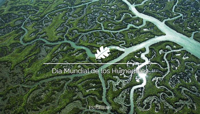 Día Mundial de los Humedales