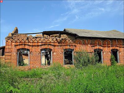 Руины синагоги в Крево