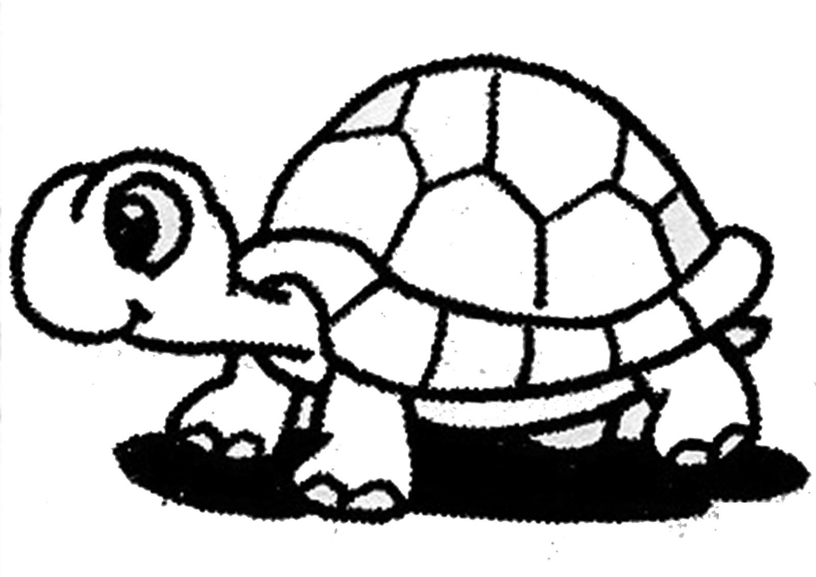 Gambar Keren Kartun Lucu 💕 💕 Gambar Zoo Kartun Hitam Putih