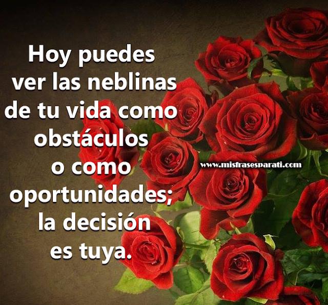 Hoy puedes ver las neblinas de tu vida como obstáculos  o como oportunidades;la decisión es tuya.