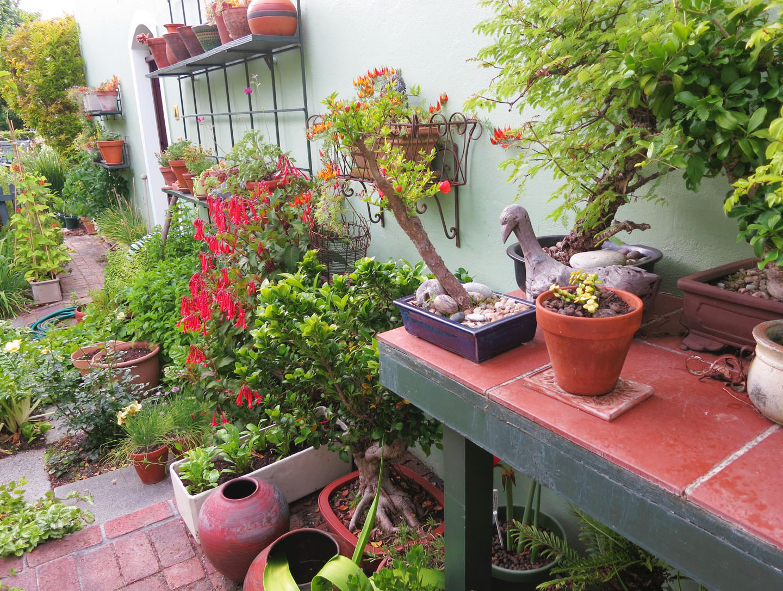 66 Square Feet (Plus): Small gardens on Small Square Patio Ideas id=93128