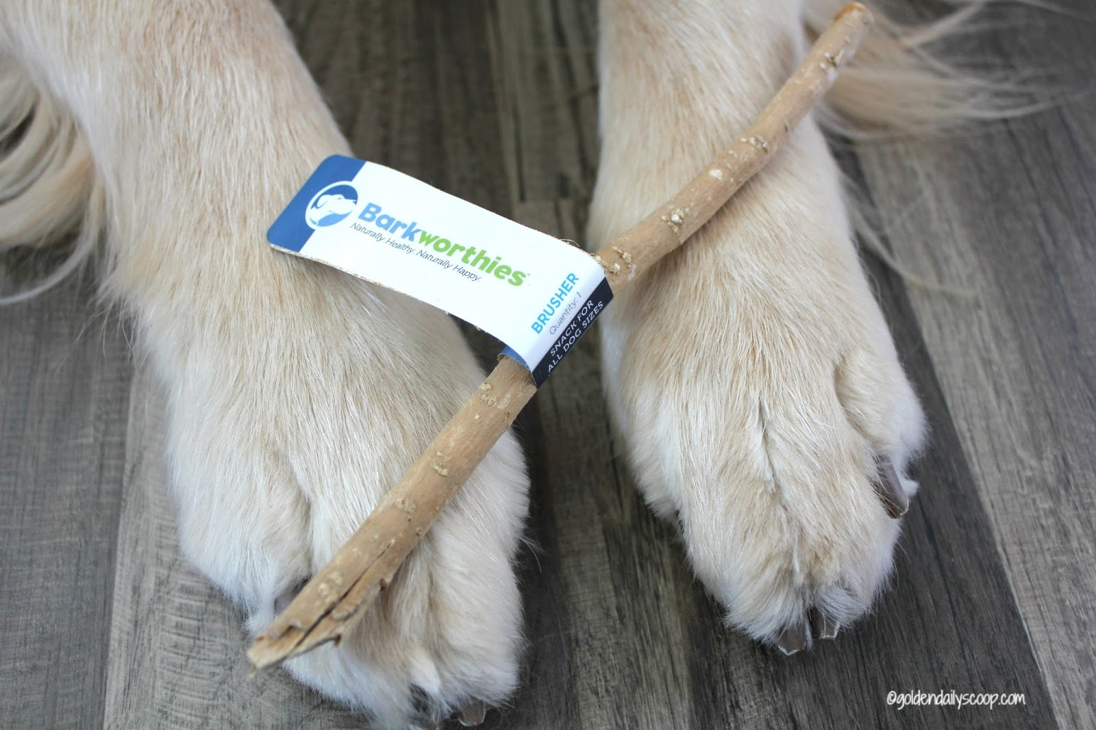 Natural Way To Brush Your Dog S Teeth