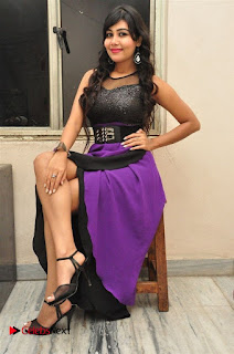 Telugu Actress Rachana Smith Stills at Money is Honey Audio Release  0110.jpg