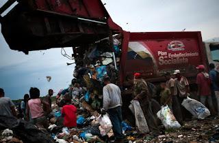 Escassez de comida faz venezuelanos buscarem frutas em árvores