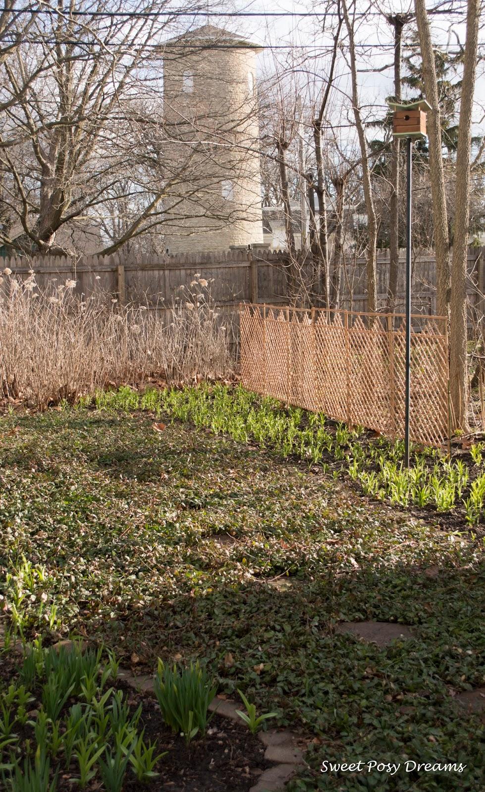 Sweet Posy Dreams: Garden Time Approaches