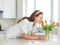 Tips Menata Tanaman di Dapur Agar Udara Lebih Segar