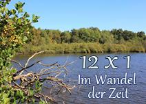 http://staedtischlaendlichnatuerlich.blogspot.de/2017/01/im-wandel-der-zeit-12-x-1-motivjanuar.html