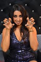 Sanjjana at her best expressions as aggresive cat   beautiful Actress Sanjjana Exclusive Pics 053.JPG