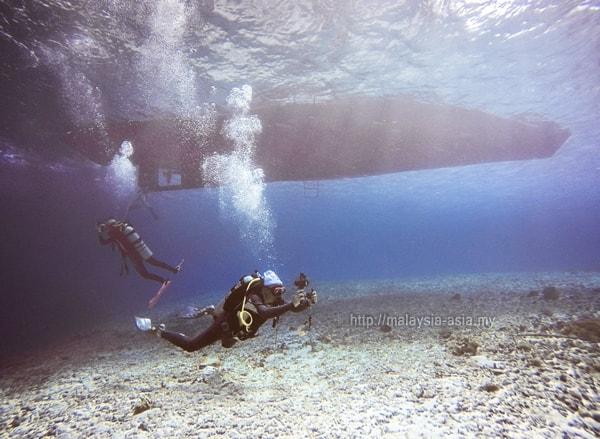 Dive Blogger