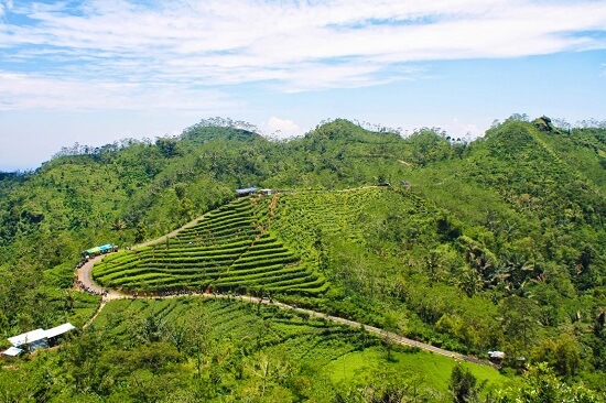Tempat Wisata di Jogja yang lagi hits