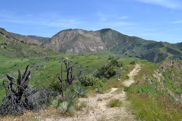 along the ridge line between Aliso and Oso