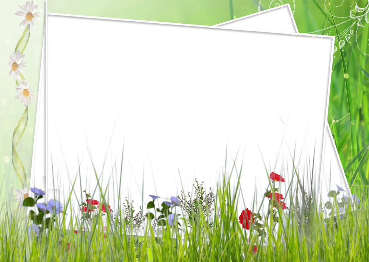 free green floral frame - photo #40